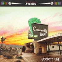 Goodbye June - Community Inn Album & Guitar Plectrum