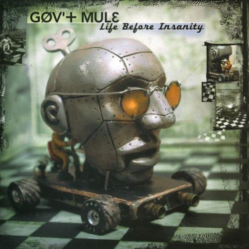 Gov't Mule -Life Before Insanity