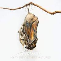 Grayceon -Mothers Weavers Vultures