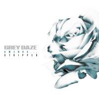 Grey Daze -Amends...stripped
