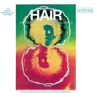 Hair  /  O.c.r. - Hair