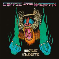 Hiatus Kaiyote -Choose Your Weapon