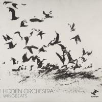 Hidden Orchestra -Wingbeats