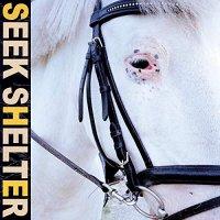 Iceage -Seek Shelter