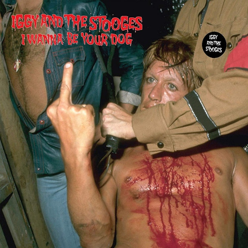 Iggy & The Stooges - I Wanna Be Your Dog
