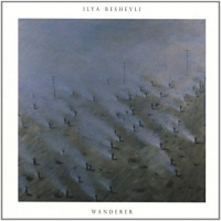 Ilya Beshevli - Wanderer Remixes