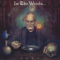In The Woods -Pure