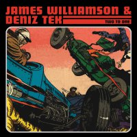 James Williamson - Two To One