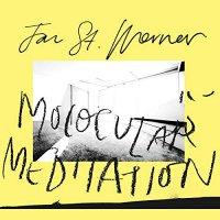 Jan St. Werner - Molocular Meditation