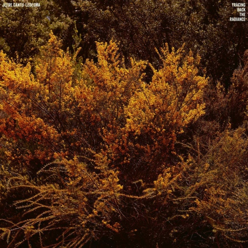 Jefre Cantu-Ledesma - Tracing Back The Radiance