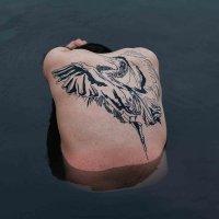 Jodi - Blue Heron