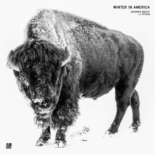 Johannes Brecht /  Fetsum -Winter In America