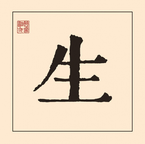John Mayer -Sei