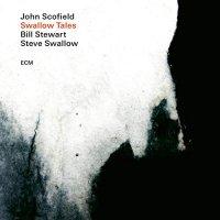 John Scofield / Steve Stewart - Swallow Tales