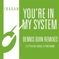 Kerri Chandler & Jerome Sydenham - You're In My System