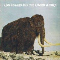 King Gizzard And The Lizard Wizard -Polygondwanaland
