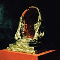 King Gizzard  &  The Lizard Wizard -Infest The Rats' Nest