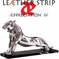Leather Strip - Appreciation Iv