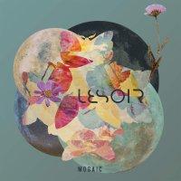Lesoir -Mosaic