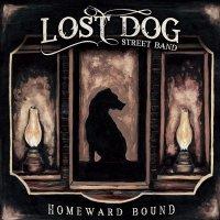 Lost Dog Street Band - Homeward Bound