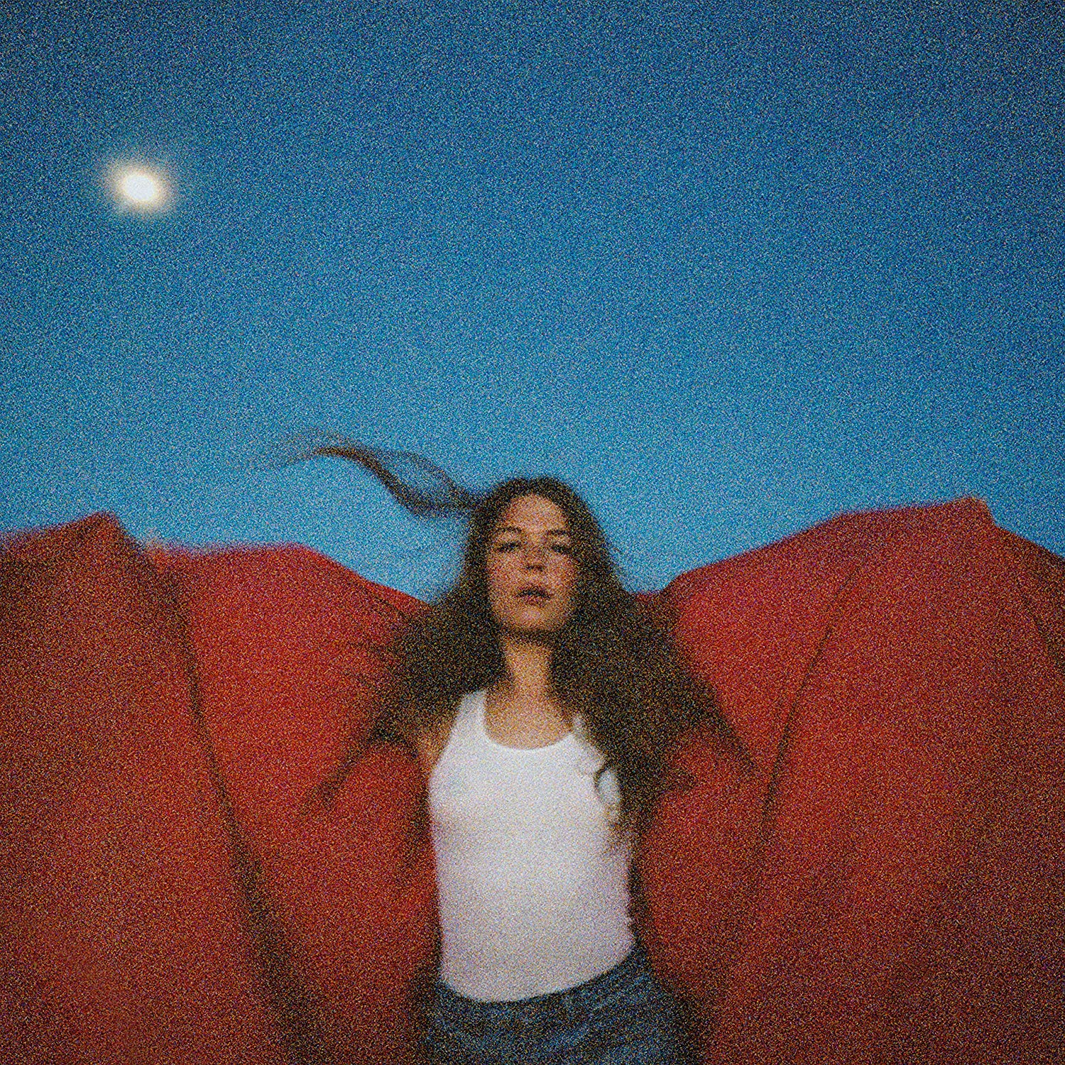 Maggie Rogers -Heard It In A Past Life