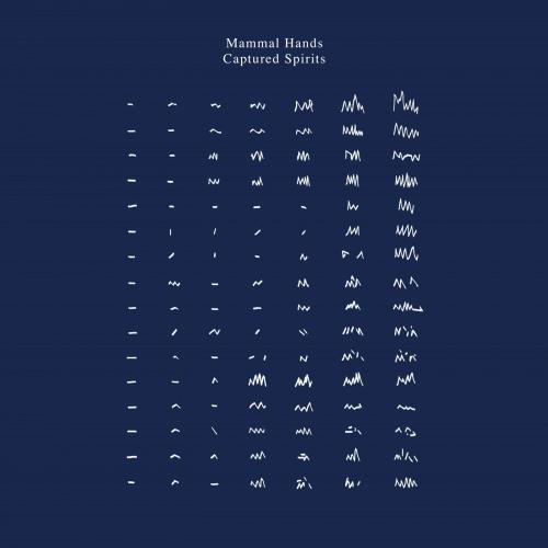 Mammal Hands -Captured Spirits