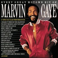 Marvin Gaye -Every Great Motown Hit Of Marvin Gaye: 15 Spectacular Performances