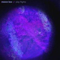 Mason Bee -Play Flights
