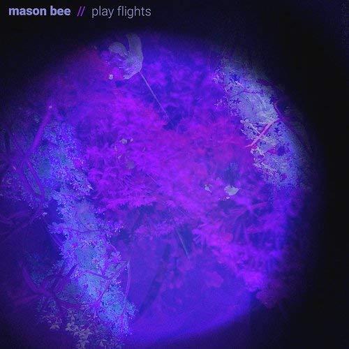 Mason Bee - Play Flights