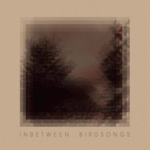 Matthias Gusset -Inbetween Birdsongs