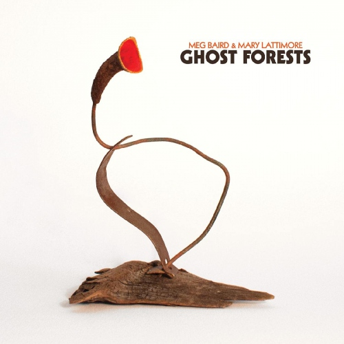 Meg Baird And Mary Lattimore - Ghost Forests