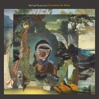 Michael Feuerstack -Harmonize The Moon