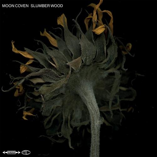 Moon Coven - Slumber Wood