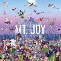 Mt. Joy -Rearrange Us
