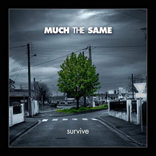Much The Same - Survive