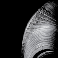 Near The Parenthesis -Helical