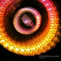 Nickodemus & Alsarah - The Crow