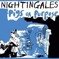 Nightingales - Pigs On Purpose