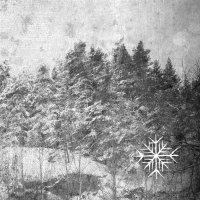 Nocturnalia - Iii: Winter