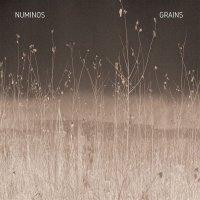 Numinos -Grains