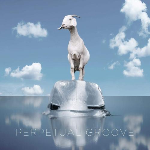 Perpetual Groove -Perpetual Groove