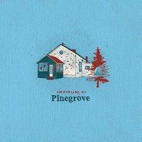 Pinegrove -Amperland, Ny