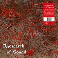 Puccio Roelens - Research Of Sound