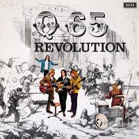 Q 65 - Revolution