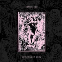 Raspberry Bulbs - Before The Age Of Mirrors Lp