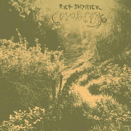 Rick Deitrick - Coyote Canyon