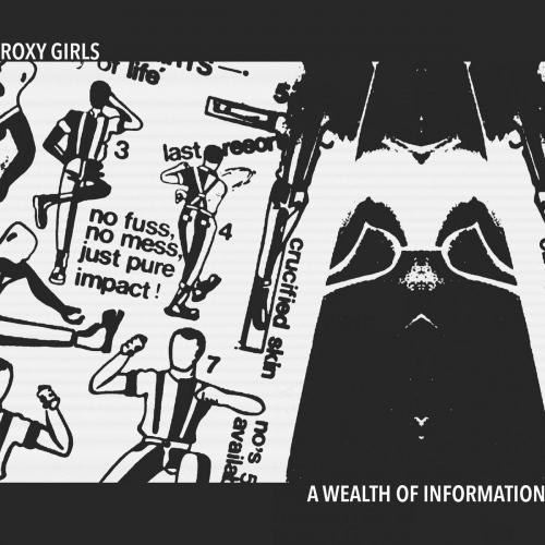 Roxy Girls -Wealth Of Information