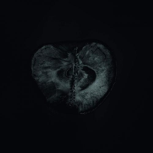 Sadon -Symphony Of Dying