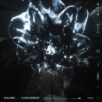 Scalping - Flood Remixed Clear