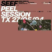 Seefeel - Peel Session